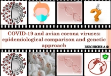 COVID-19 and avian corona viruses: epidemiological comparison and genetic approach.