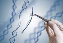 OJAFR-1098_-genetic-engineering